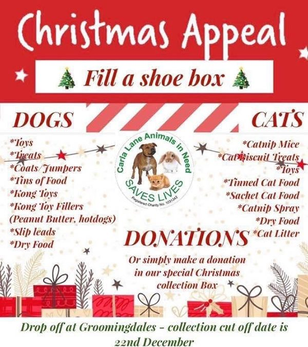 Donate To Our Christmas Appeal